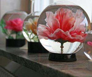 Vätskefyllda glaskupor med plastros i.