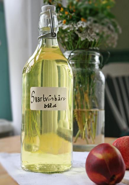 Glasflaska med ljus saft av svarta vinbärsblad. saftavblad.jpg