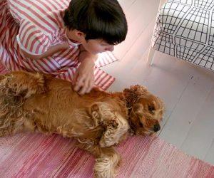 Hunden Sixten ligger på sidan på golvet och blir kliad på sidan av magen av Clara.