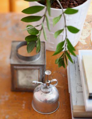 Träbord med blad från krukväxt som slingrar sig in över lykta och silversaker över bordskivan.