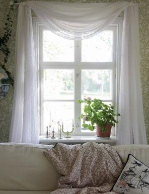 Ljus somrigt fönster med tyllgardin och pelargon med stora frodiga blad.