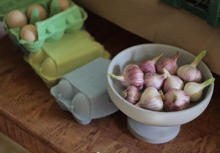 Ägg och vitlök i gårdbutiken.
