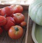 Blandade storlekar av tomater som ligger på ett ugnsgaller.