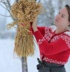 Clara klädd i röd julkofta utomhus hänger upp en julkärve
