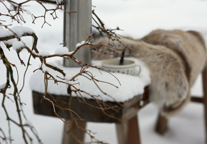 Varmdryck på snöig träbänk med termos och värmande fäll i renskinn.