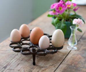 Flera olika sorters ägg i olika storlekar i guten form för just ägg som står på köksbord.