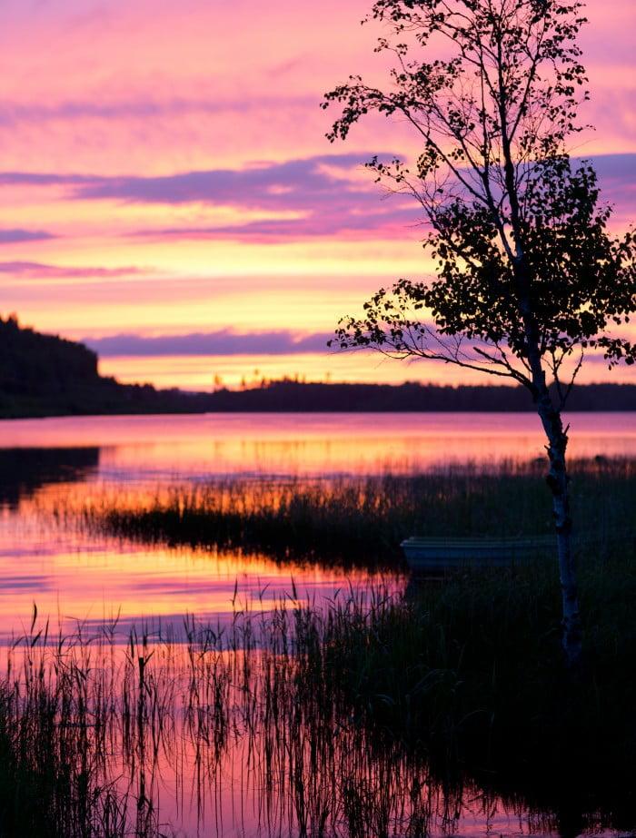 Kvällshimmel med skarpa färger av rosa, gult och lila.