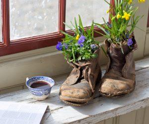 Gamla trasiga kängor som fungerar som krukor med blå och gula påskblommor planterade i skoskaften, står på fönsterbräda intill en kopp kaffe.