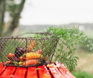 Nyskördade morötter i olika färger ligger i trådkorg på regnblankt trädgårdsbord.