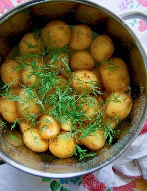Potatis och dill i stort aliminumkärl.
