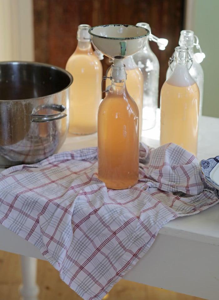 Nytappad saft av rabarber i flaskor.