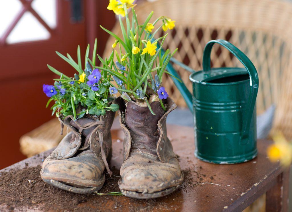 Utnötta kängor med blommor planterade innuti,