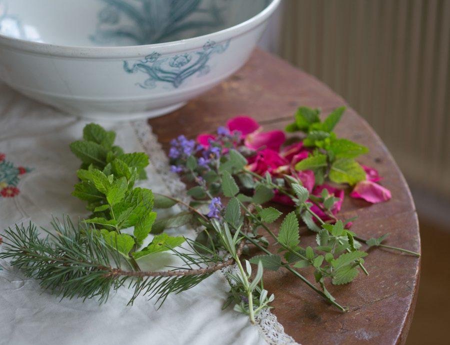 Porslinsskål på träbord med örter och blomblad från ros som ligger vid sidan.
