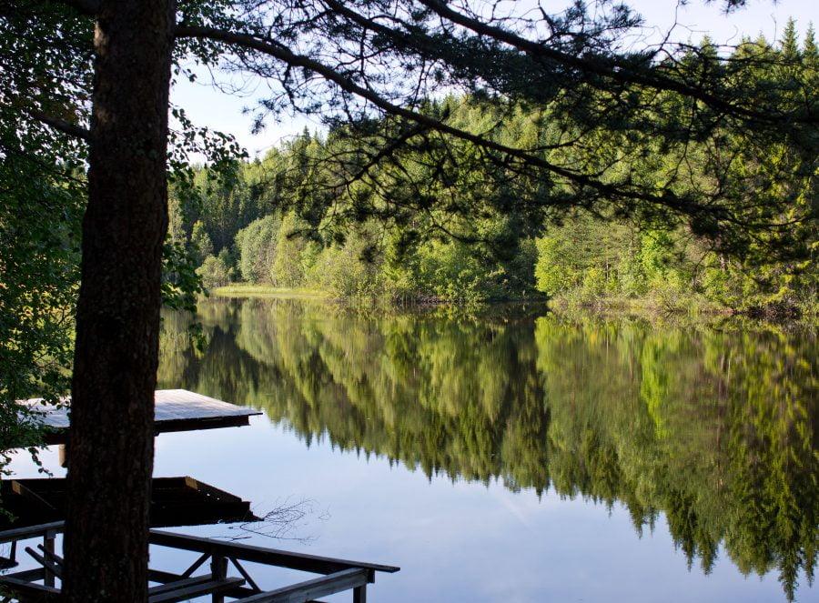 Badplatsen hemma hos Erica, soligt vatten intill skog med en träbrygga som sticker ut över vattnet. Ur En Underbar Pod.