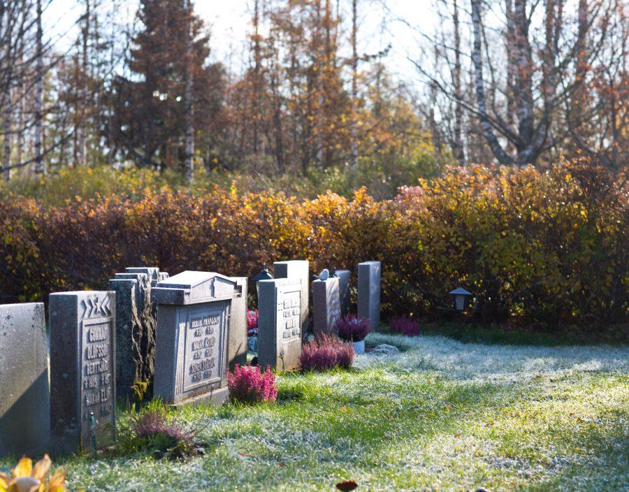 Gravstenar i rader på Backens kyrkogård i Umeå. Ur En Underbar Pod.