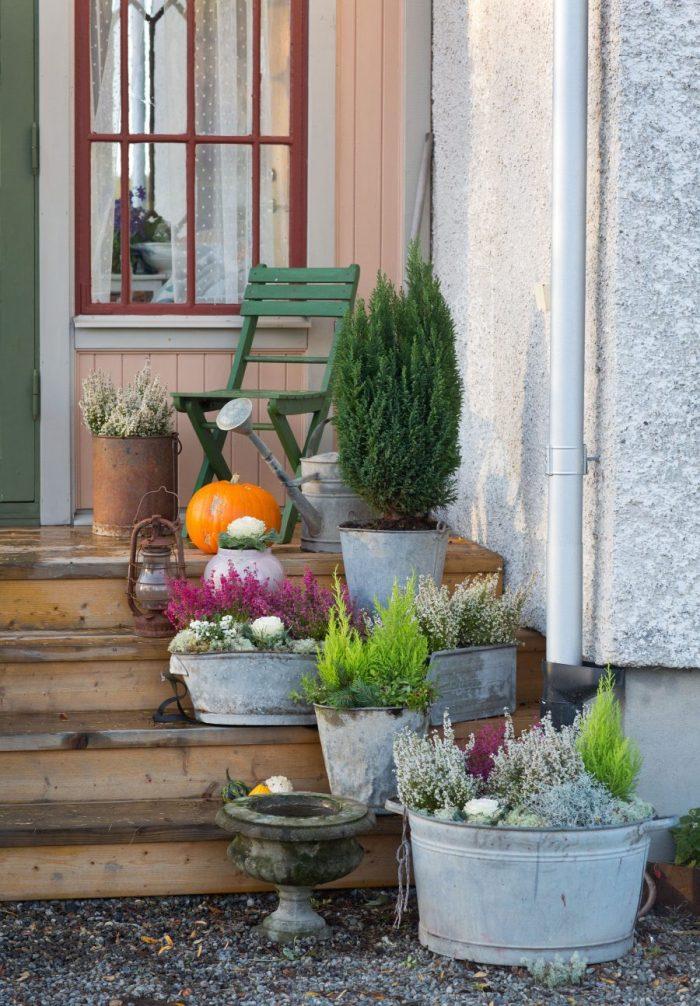 Trätrappa utomhus med plåthinkar och baljor fyllda med ljung, en och andra höstiga växter, på trappan står också en grön trädgårdsstol och en stor orange pumpa.