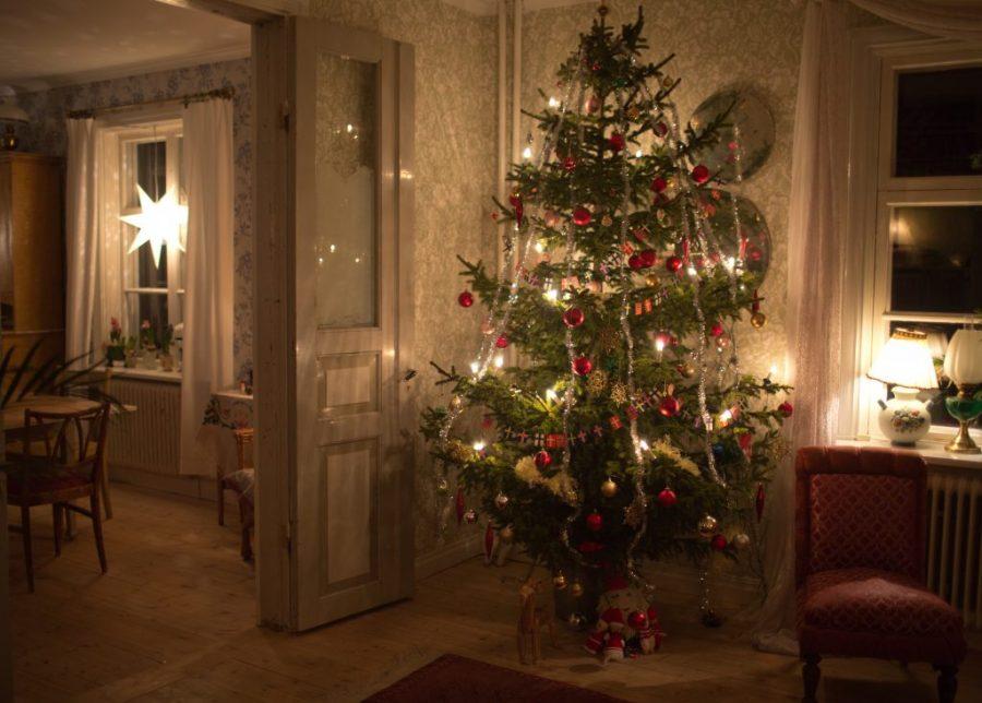 Välpyntat julgran fotad i kvällsmörker