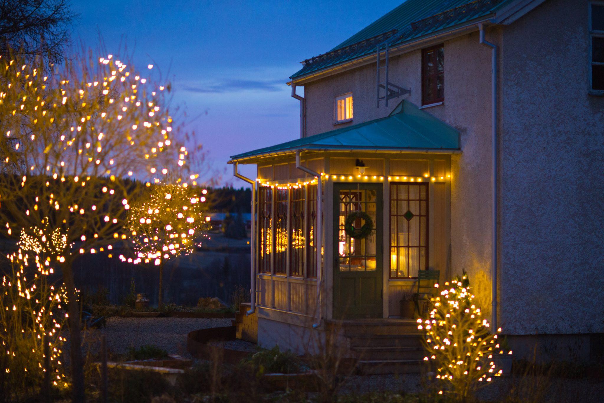 Helt nya Juleljus i trädgården - Blommor & Trädgård, Claras jul EZ-88