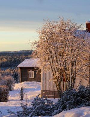Krispigt vitt norrländsk landskap med vitt hus i förgrunden, en mindre stuga bakom och sedan vitt snöigt skogslandskap med utsikt.