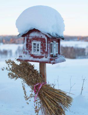 Fågelbord i form av liten röd stuga och på käppen som håller upp stugan sitter en julkärve med havre. Snö på stugans tak och vinterlandskap i bakgrunden.